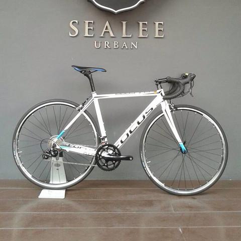 e4eed578cf3 FOCUS CULEBRO SL 4.0 SORA 18SP 28,000 บาท - ThaiMTB.com - จักรยาน