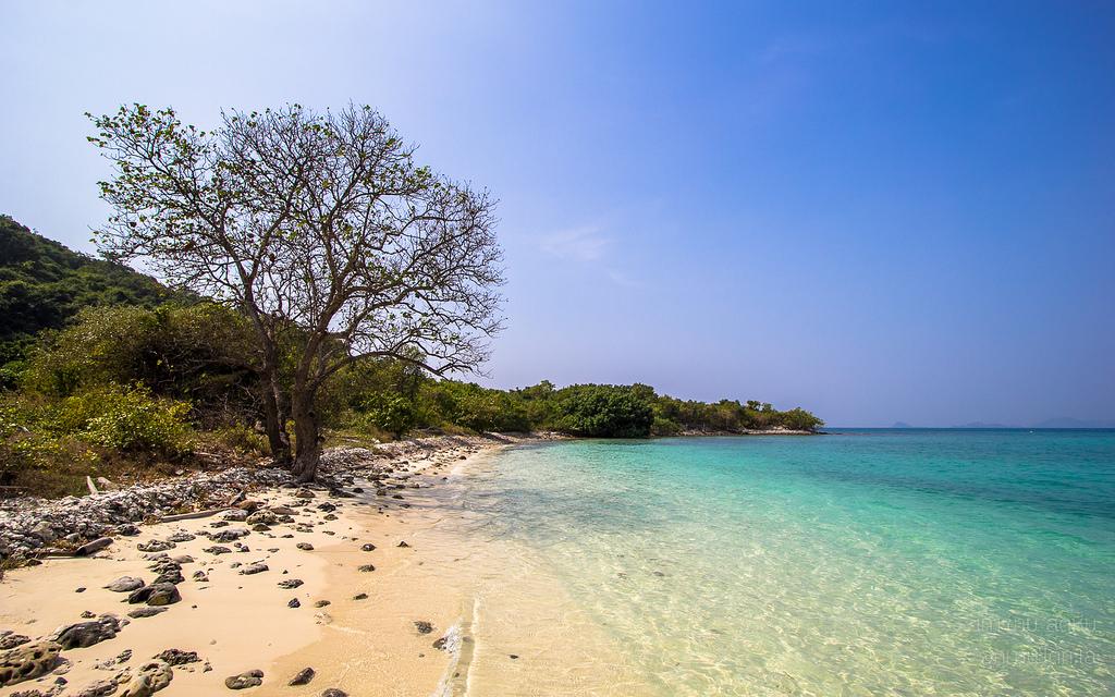 เกาะขาม.jpg
